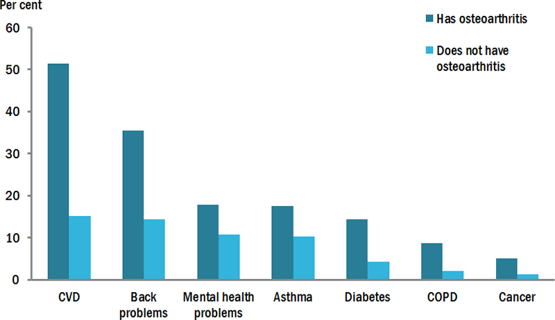 This vertical bar chart compares the prevalence of chronic conditions (including CVD, back problems, mental health problems, asthma, diabetes, COPD and cancer) among those with and without osteoarthritis. Those with osteoarthritis had higher rates of all chronic conditions compared to those without osteoarthritis.