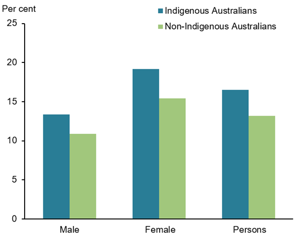 This vertical bar chart compares the age-adjusted percentage of self-reported arthritis among Indigenous and non-Indigenous Australians by sex. Among the Aboriginal and Torres Strait Islander population, 19.2%25 of females and 13.4%25 of males are affected (and overall 16.5%25 of the total Indigenous population), while in non-Indigenous Australians 10.9%25 of males, 15.4%25 of females and 13.2%25 of the total population are affected (Figure 2).