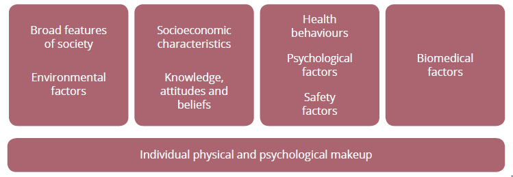 This diagram shows the determinants of health. The determinants are divided into four groups: broader features of society and environmental characteristics; socioeconomic characteristics, and knowledge, attitudes and beliefs; health behaviours, psychological factors and safety factors; and biomedical factors. An individual's physical and psychological makeup is also associated with these four groups, but depicted separately.