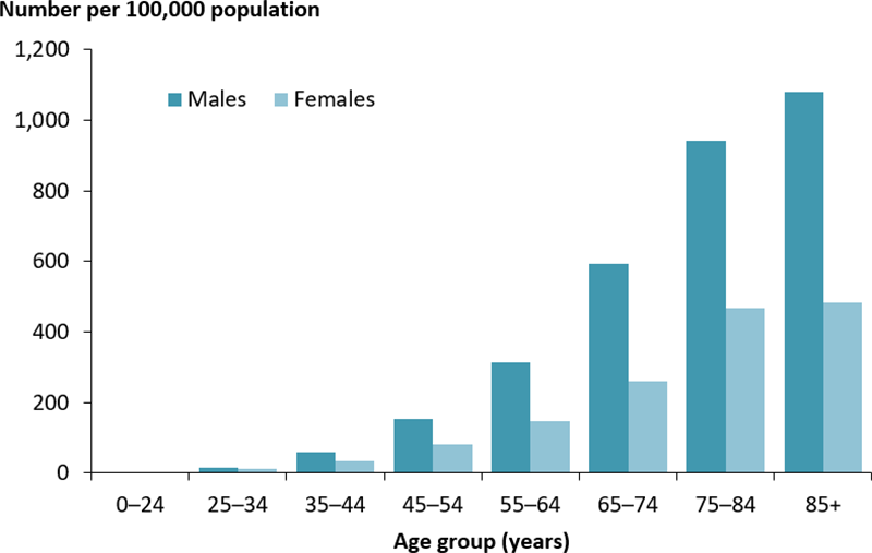 The vertical bar chart shows the rate of hospitalisations for type 2 diabetes as a principal diagnosis, by age group and sex. The rate of hospitalisations was higher among males than females and increased with increasing age. Among those aged 85 years and older, the rate of hospitalisations was 1,081 per 100,000 population among males and 483 per 100,000 population in females.