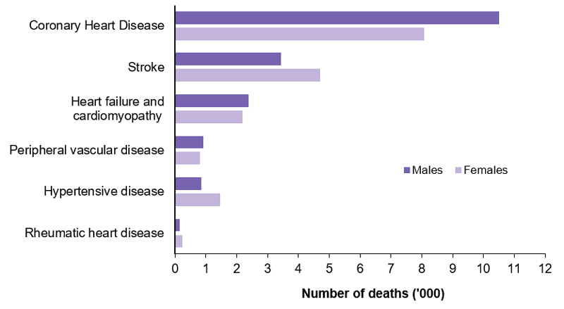 This column graph shows that coronary heart disease was the most common underlying cause of CVD death for both males and females in 2017. Coronary heart disease was the underlying cause of 10,514 death of males and 8,076 deaths of females. Stroke was the second most common underlying cause of CVD death followed by heart failure and cardiomyopathy, and peripheral vascular disease. More females than males had stroke, hypertensive disease and rheumatic heart disease listed as the underlying cause of death.