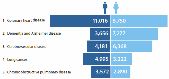Bar chart showing the leading causes of death in 2013 for Australian men and women. The leading causes for both sexes are: coronary heart disease, dementia and Alzheimer disease, cerebrovascular disease, lung cancer, and chronic obstructive pulmonary disease.