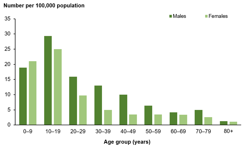 The bar chart shows the incidence of type 1 diabetes peaked in the 10–19 year age group with 29 and 25 new cases per 100,000 population for males and females, respectively, in 2017. The incidence rate was higher for males than females in all age groups except 0–9 years.