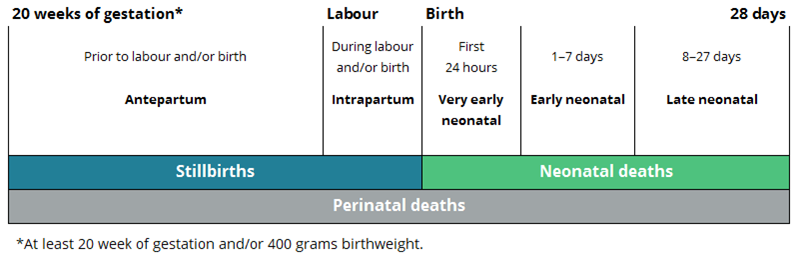 Definitions of perinatal death Antepartum stillbirths occur prior to labour and/or birth. Intrapartum stillbirths occur during labour and/or birth. Very early neonatal deaths occur within the first 24 hours of birth. Early neonatal deaths occur between 2 and 7 days following birth. Late neonatal deaths occur between 8 and 28 days following birth. Perinatal deaths are all stillbirths and neonatal deaths from 20 weeks' gestation to 28 days following birth.