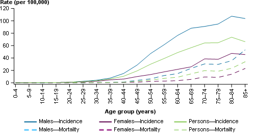 This line chart presents the estimated age-specific incidence (solid line) and mortality (dashed line) rates of head and neck cancer for males (blue), females (purple) and persons (green) in 2017. The age-specific incidence and mortality rates are shown on the primary (left) y-axis, with 5-year age groups from ages 0–4 to 85+ shown on the x-axis.