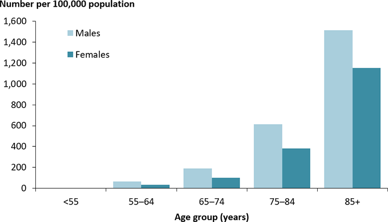 The vertical bar chart displays the death rate from diabetes by age group and sex. The rate increased across age groups and was consistently higher among males than females within each age group. The rate was highest among those in those aged 85 years and older for both males (1,513 per 100,000 population) and females (1,153 per 100,000 population).