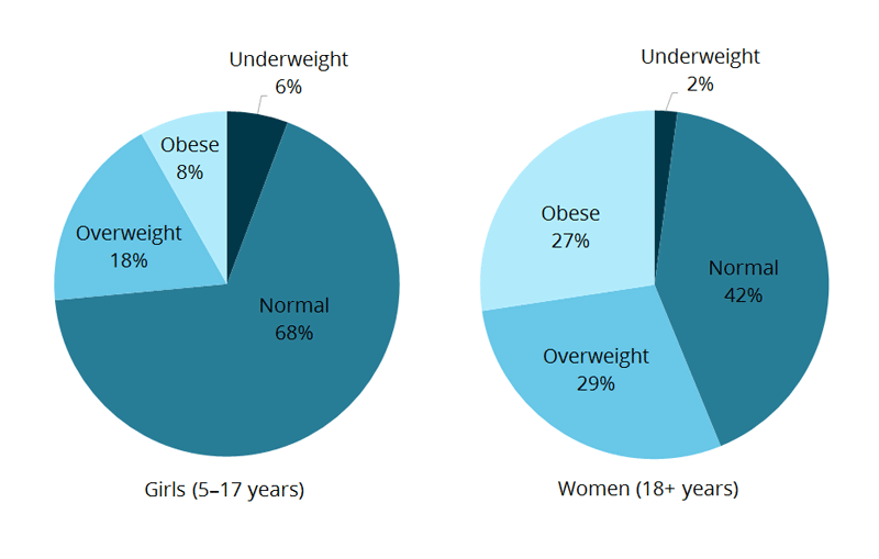 This figure is comprised of two pie charts. The first shows that, for boys aged 5–17 years, 6%25 are underweight, 66%25 are normal weight was, 22%25 are overweight, and 6%25 are obese, based on their BMI measurement. The second pie chart shows, for men aged 18 and over, 11%25 are underweight, 28%25 are normal weight, 42%25 are overweight, and 29%25 are obese, based on their BMI measurement.
