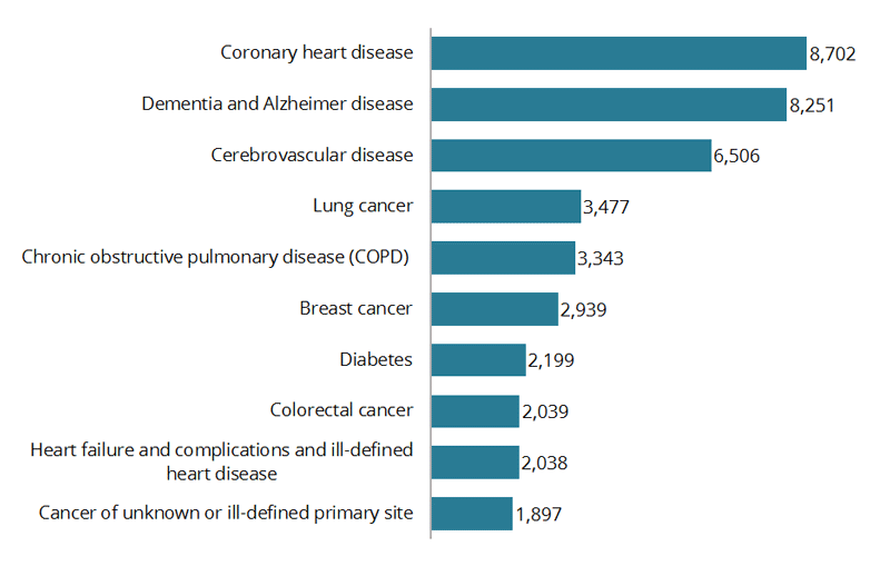 This horizontal bar chart shows the leading cause of death for females was coronary heart disease with 8,702 deaths in 2015. This was followed by dementia and Alzheimer disease with 8,251 deaths, and cerebrovascular disease with 6,506 deaths. The remaining 7 leading causes of death were all less than 4,000 deaths and included lung cancer; chronic obstructive pulmonary disease; breast cancer; diabetes; colorectal cancer; heart failure and complications and ill-defined heart disease; and cancer of unknown or ill-defined primary site.
