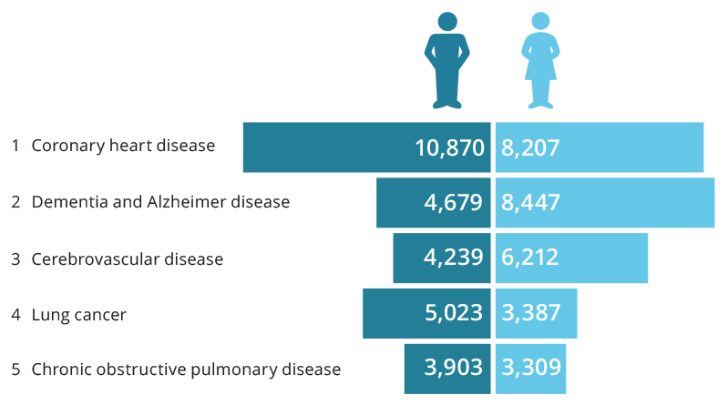 The bar chart shows that the leading underlying cause of death was coronary heart disease. 11,082 males died due to coronary heart disease compared to 9,091 females. The second leading underlying cause of death was dementia and Alzheimer disease, with 4,106 deaths among males and 7,859 deaths among females. Cerebrovascular disease was the third leading underlying cause, with 4,279 deaths among males and 6,486 deaths among females. The fourth leading underlying cause of death was lung cancer, with 4,947 deaths among males and 3,304 deaths among females, while the fifth leading underlying cause was chronic obstructive pulmonary disease, with 3,911 deaths among males and 3,114 deaths among females.