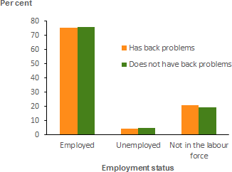 The vertical bar chart shows that there was very little difference in the workforce participation of 15–64 year olds with and without back problems.